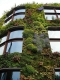 Green building technology